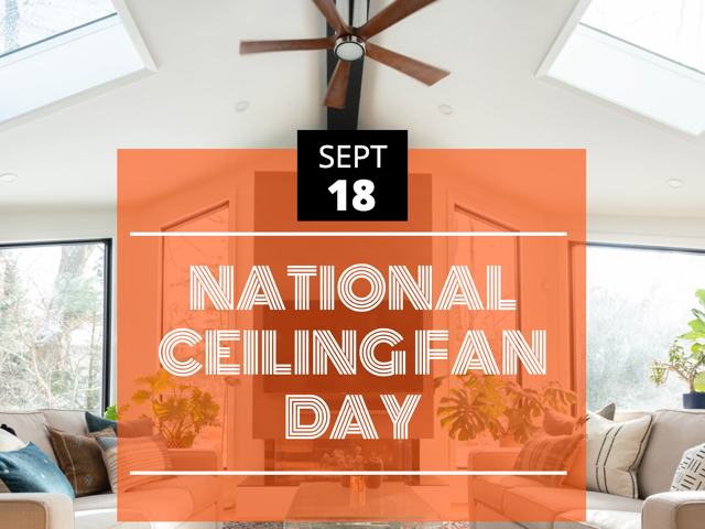 Everything You Always Wanted To Know About Ceiling Fans* (*but Were Afraid To Ask)